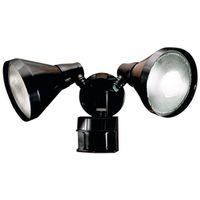Heathco HZ-5412-BZ Security Floodlight