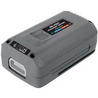 EcoSharp IBAT40 Lithium Battery