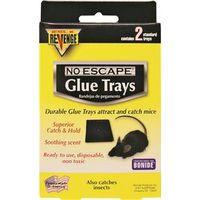 MOUSE GLUE TRAP TRAY 2PK