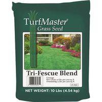 GRASS SEED TRI-FESCUE 10 LB