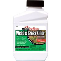 KILLER WEED/GRASS CONCENT PT