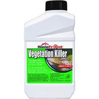 KILLER VEGETATION CONC QT