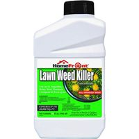 KILLER WEED CONCENTRATE 40OZ