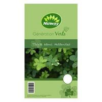 SEED CLOVER DTCH 500G