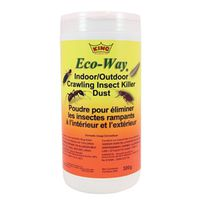 INSECTICIDE 300G INDR/OUTDR