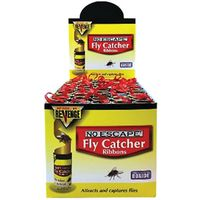 FLY CATCHER RIBBON CASE/100PC