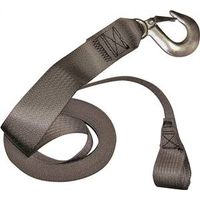 WINCH STRAP POLYES 2INX23FT