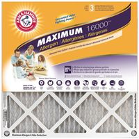 AIR FILTER 16X20X1IN MAX ODOR