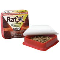 TRAY BAIT RAT 2PK