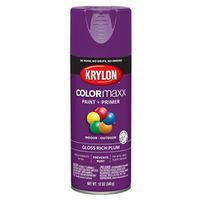PAINT SPRY GLS RICH PLUM 12OZ