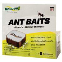 BAIT ANT 6PK