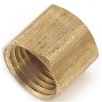 Anderson Metal 756108-02 Brass Pipe Cap