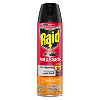 ANT/ROACH SPRAY ORANGE 17.5OZ