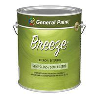 BREEZE EX SG CLEAR BASE