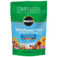 MIX WINDFLOWER ALL-IN-1 2.2LB