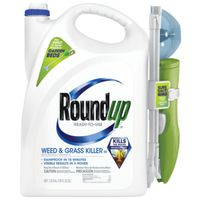 KILLER WEED&GRASS WAND 1.33GAL