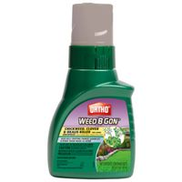 KILLER CHICKWEED CLOVER 16OZ