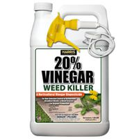 KILLER WEED/GRASS VINEGAR RTU
