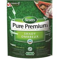 Pure 0131 Shady Grass Seed