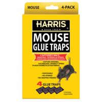 TRAP GLUE MOUSE 4 PK