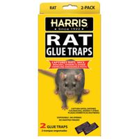 TRAP GLUE RAT 2 PK