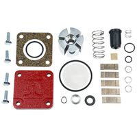 Fill-Rite 4200KTF8739 Pump Repair Kit