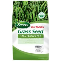 SEED GRASS TALL FESCUE MIX 3LB