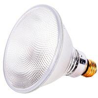 Capsylite 16744 Halogen Lamp