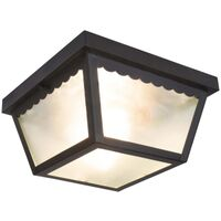 LIGHT FLUSH MOUNT BLACK 2-BULB