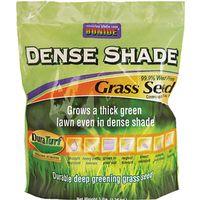 SEED GRASS DENSE SHADE 3LB