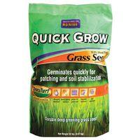 SEED GRASS QUICK GROW 20LB