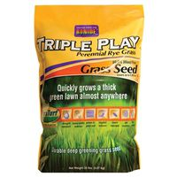 SEED GRASS RYE TRPLE PLAY 20LB
