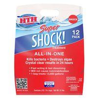 SHOCK SPR TREATMENT POOL12X1LB