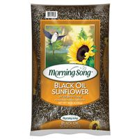 SEED SUNFLOWER BLACK OIL 20LB