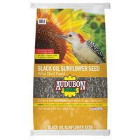 SEED BIRD BLACK/OIL SNFLR 40LB