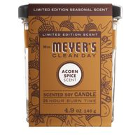 CANDLE SOY ACORN SPICE 4.9OZ
