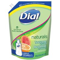Dial 1246114 Anti-Bacterial Hand Soap Refill Pouch