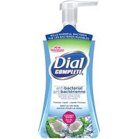 Dial Complete 1707053 Anti-Bacterial Foaming Hand Wash