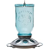 Perky Pet 784 Mason Jar Seed Feeder