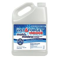 CLEANER MOLD/MLDW INDOOR 128OZ