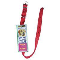 Aspen 15506 Pet Collar