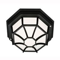 Trans Globe 40581 Outdoor Lighting