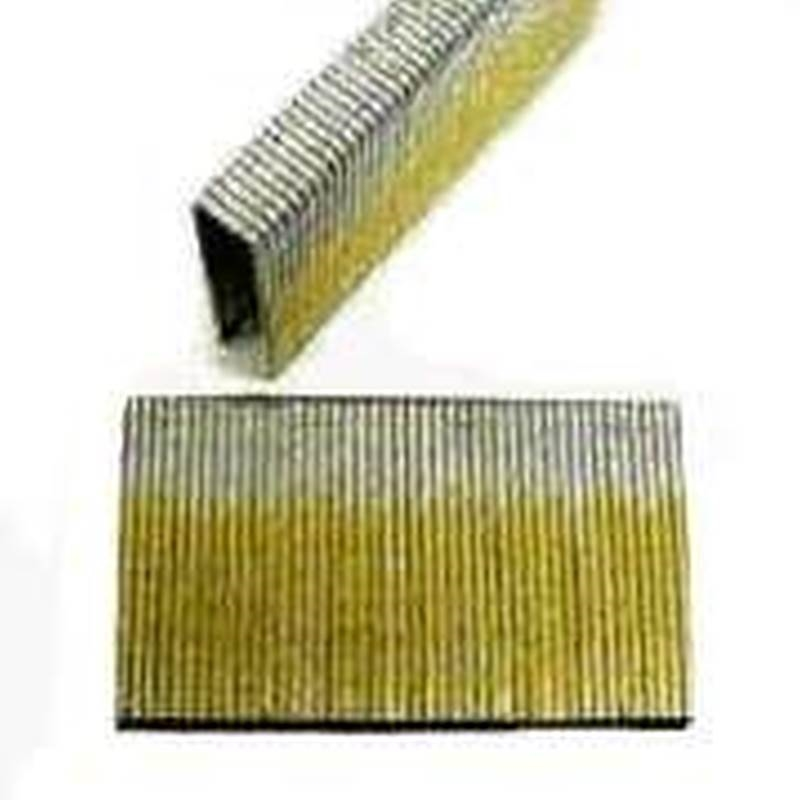 81a853b0047 Pro-Fit 0617110 Medium Crown Staple