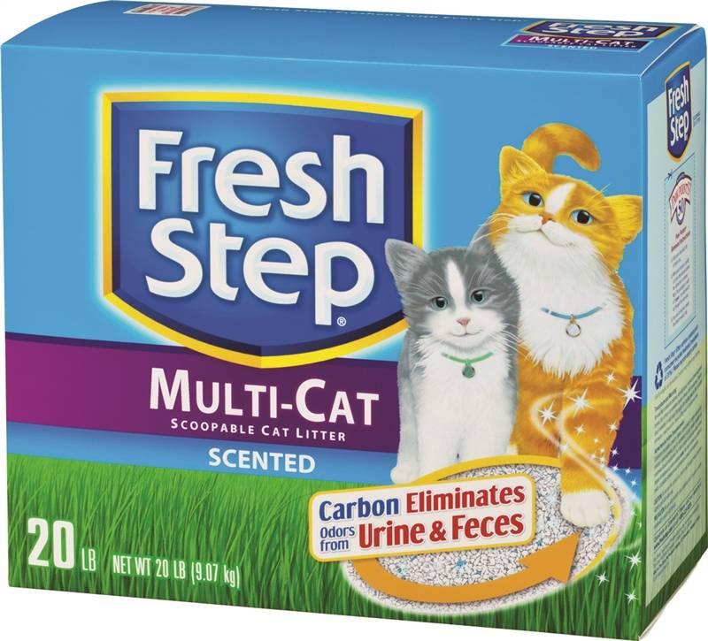 Clorox Cat Litter Plant