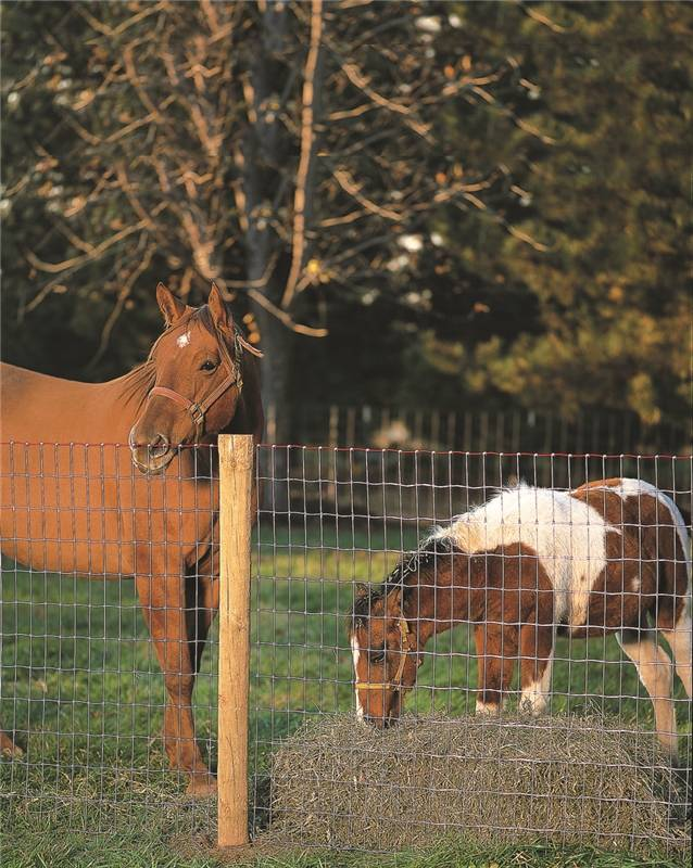 Keystone Wire 70318 Square Deal Horse Fence 12 5 Gauge Galv 72 Inch X 100 Foot