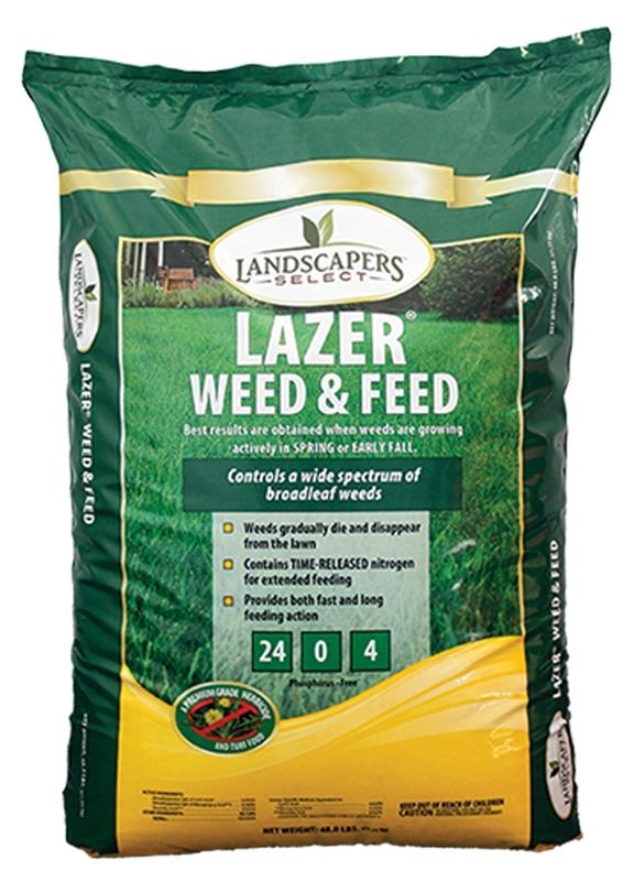 LAWN WEED/FEED LAZER 24-0-4 5M